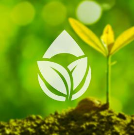 Nuevas líneas de  producto: Protección de cultivos y Línea Cosmo-Organic.