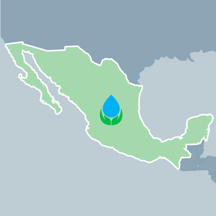 Iniciación de la producción de las marcas representadas de México.