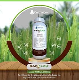 Conoce los beneficios del producto Radiflex